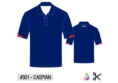 Polo Updated-02